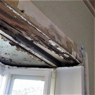 ③室内の出窓枠材までやられています。