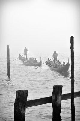 Nebbia in laguna