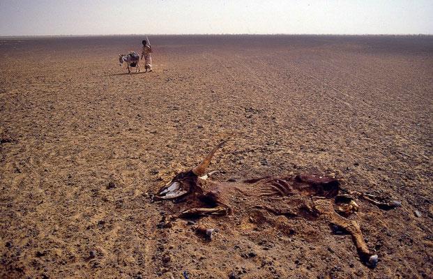 Deserto del Gourma Mali - 1985