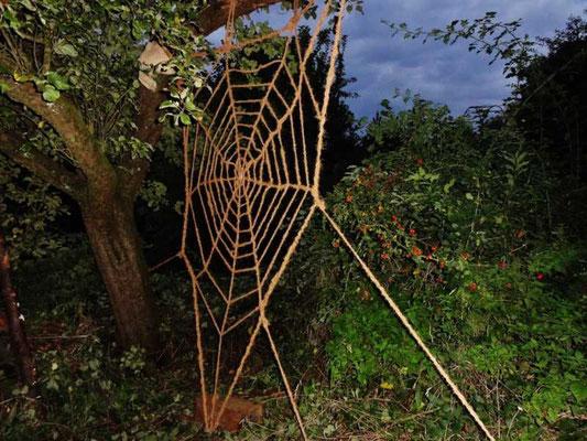wir finden es prachtvoll, bald wird es von einer Spinne begrüßt, die ihr eigenes Netz hinein baut