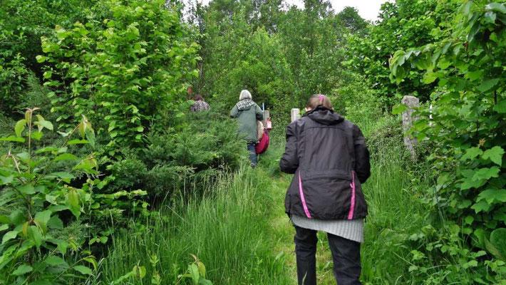 mit Rasseln und frischen Kräutern betreten wir den Ritualgarten