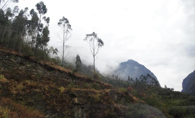 Busfahrt durch die Berge und Wolken