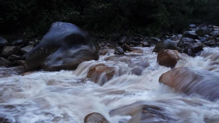 reißender Fluss im Urwald