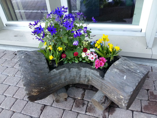 Frühlingsbepflanzung