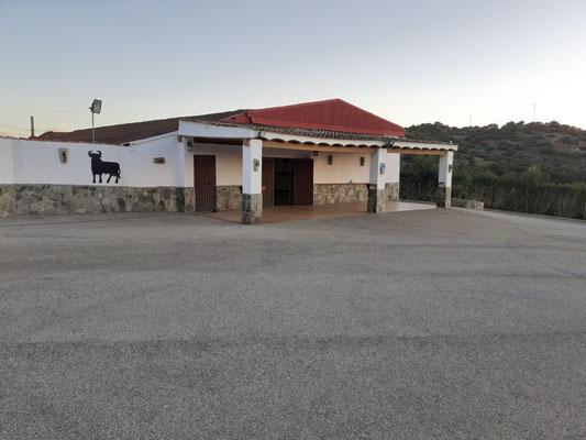 almuerzo con capea en Cadiz