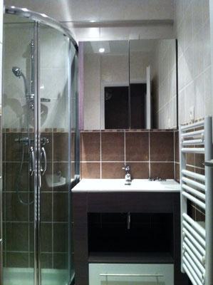 Albertus rénovation salle de bain à savines le lac