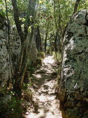Frankreich: Bois de Paiolive, Le Bastiaire und Le Labyrinthe