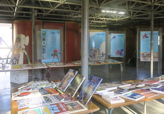 """2019 Exposition """"Super-Héros"""" (Médiathèque P.O.) & Passe-tête fabriqué par Chantal Desdouets."""