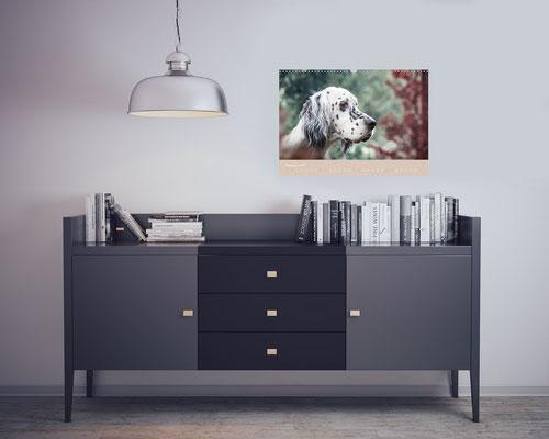 VISOVIO English Setter - Impressionen edler Hunde || english setter, geschenkidee, setter kalender, fineart