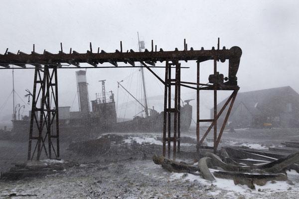 Alte Walfangstation auf Süd Georgien