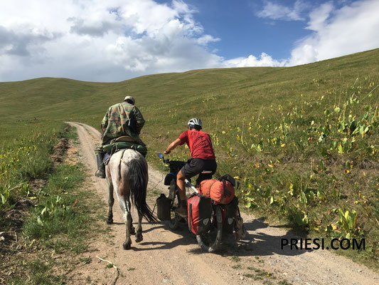 normalerweise lasse ich mich ja von LKW ziehen...aber von einem Pferd ist natürlich auch möglich!