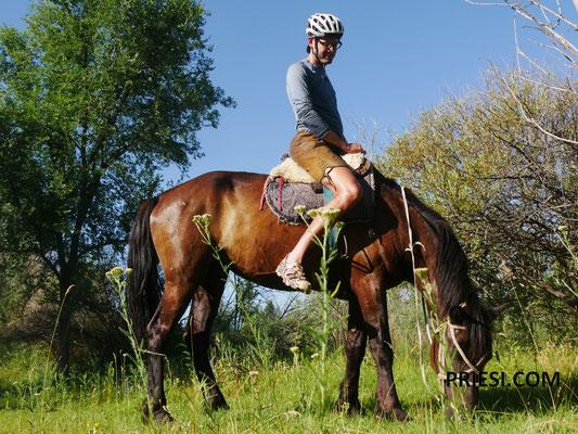 Viele Male wurde mir angeboten aufs Pferd zu klettern..