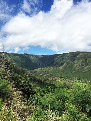 halawa-valley