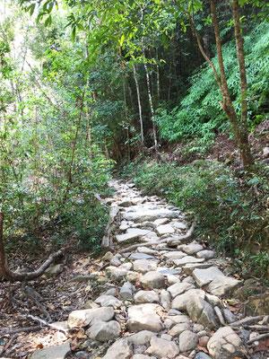 weg-zum-klong-plu-wasserfall