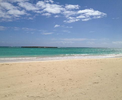 ostkueste-oahu-beach
