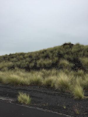 highway-270-big-island