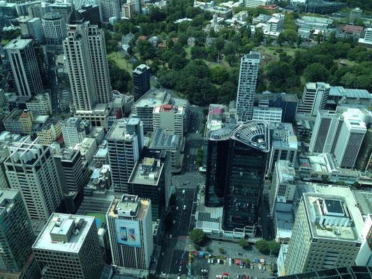 ausblick-aus-dem-sky-tower