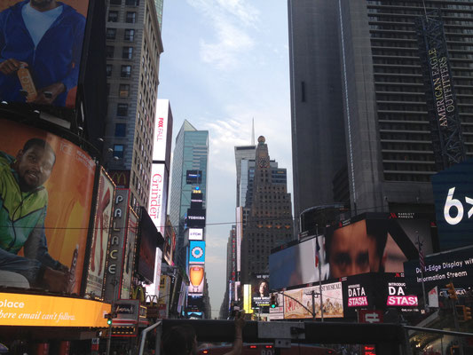 sightseeing-times-square-ny