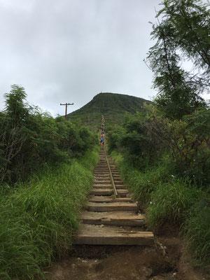 koko-head-treppe