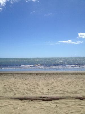 smugglers-cove-beach-resort