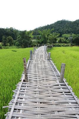 bamboo-bridge-pai