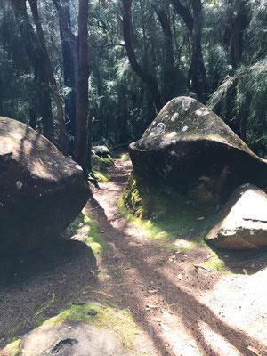 phallic-rock