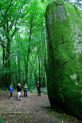 Menhir du Rossil (propriété privée) © Alexis Le Priellec