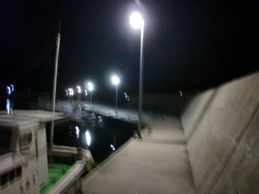 夜間の漁港の写真3