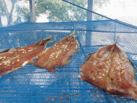 イワシのミリン干し の写真