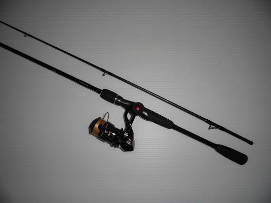 イイダコ釣り エギング用タックルの写真