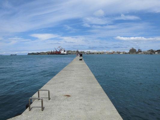 荒田港・岩壁の写真