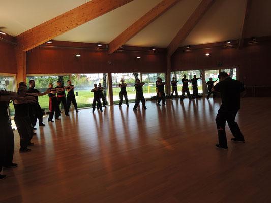 Wing Chun Trainingscamp in Salzburg 2