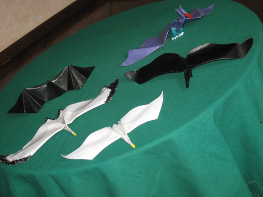 Bat - Seagull - Goose -  Raven - Flying Drake