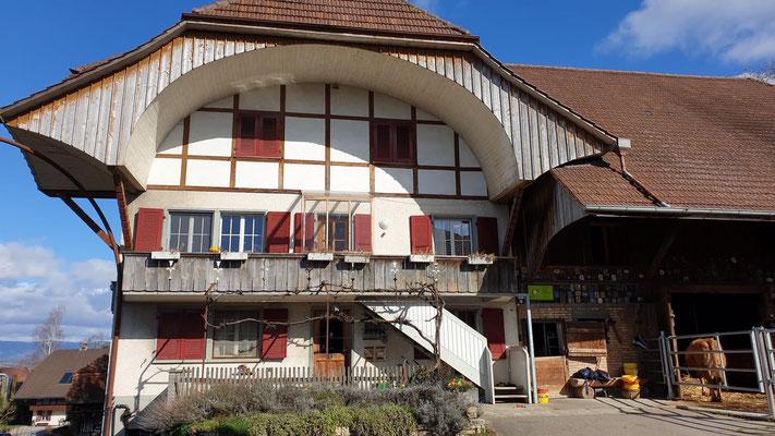 Frühling 2020 - Biohof Hübeli Kallnach