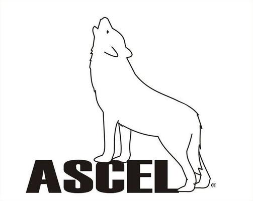 ASCEL