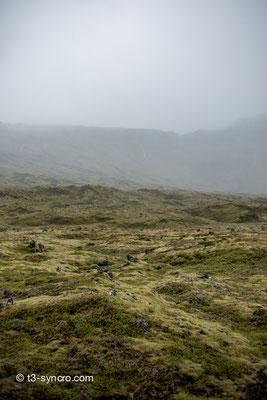 krater-mooslandschaft