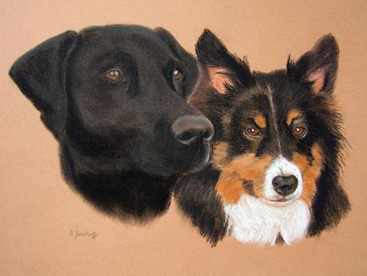 """""""Clyde und Joy"""" Pastell auf Tonpapier 30x40 cm 07.2006"""