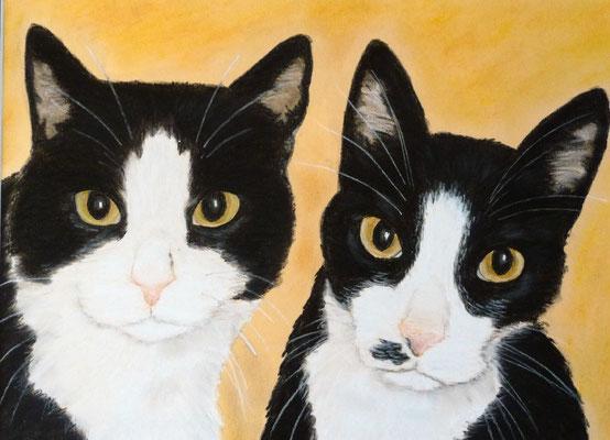 """""""Rico und Nico"""" Pastell auf Tonpapier 30x40 cm 04.2011"""