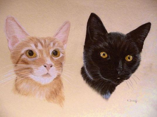 """""""Kowolsky & Marty"""" Pastell auf Tonpapier 30x40 cm 04.2010"""