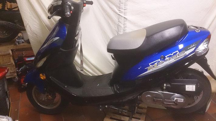 Rex 450