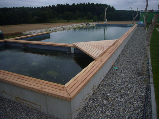 Umrandung Schwimmteich