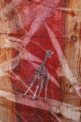"""""""Giraffe"""", 80 x 120 cm, 650 €"""