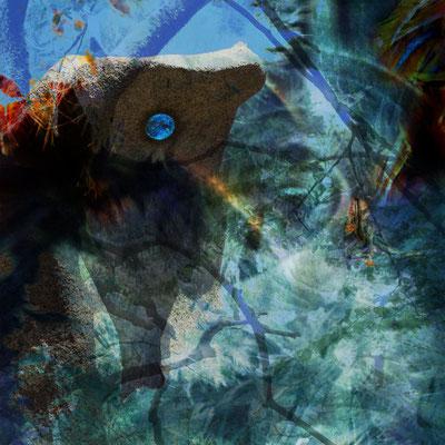 """""""Das Auge des Waldes"""", 40 x 40 cm, 300 €"""