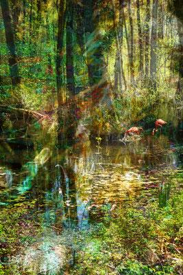 Moorlandschaft mit Flamingos, 50 x 75 cm, 350 €