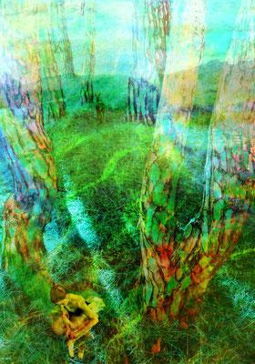 """""""Pinienhain"""", 50 x 75 cm, 330 €"""