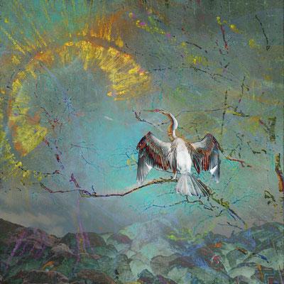 """Kormoran"", 80 x 80 cm, 700 €"