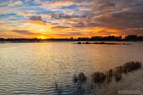 Resplandores marismeños  /Radiances marsh