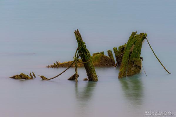 La barca abandonada  /  The abandoned boat