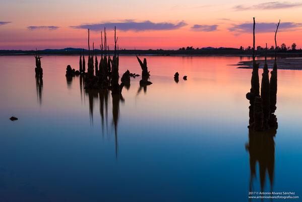 Soledad en el embalse  / Solitude in the reservoir