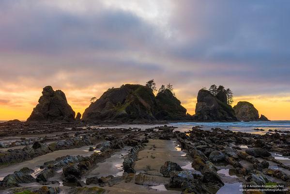La luz se oculta tras los farallones en la playa de Shi Shi  / The light is hidden behind the farallones on Shi Shi Beach